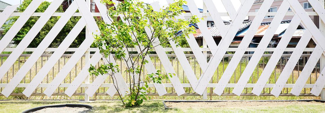 価値ある樹木、素材を生かしてリサイクル